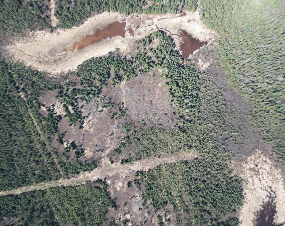Drone 15 cm