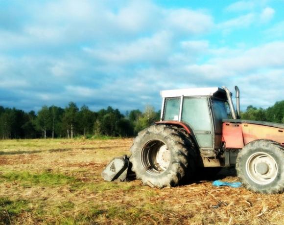 Tracteur avec tête déchiqueteuse (forêt privée)